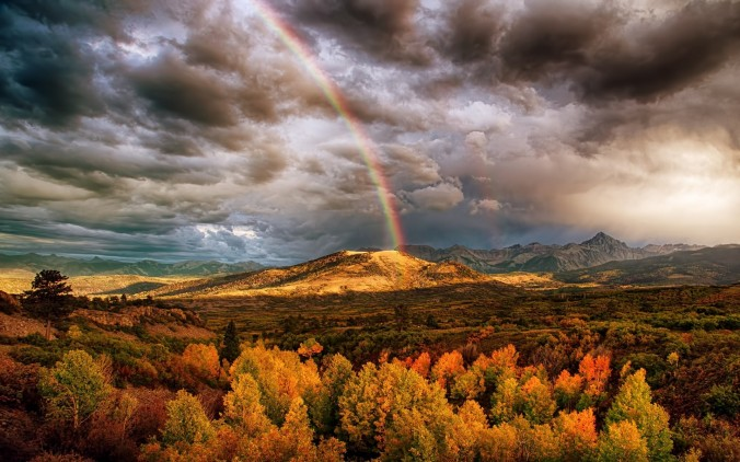 Nature___Mountains_Rainbow_over_the_forest_in_the_mountains_109583_.jpg
